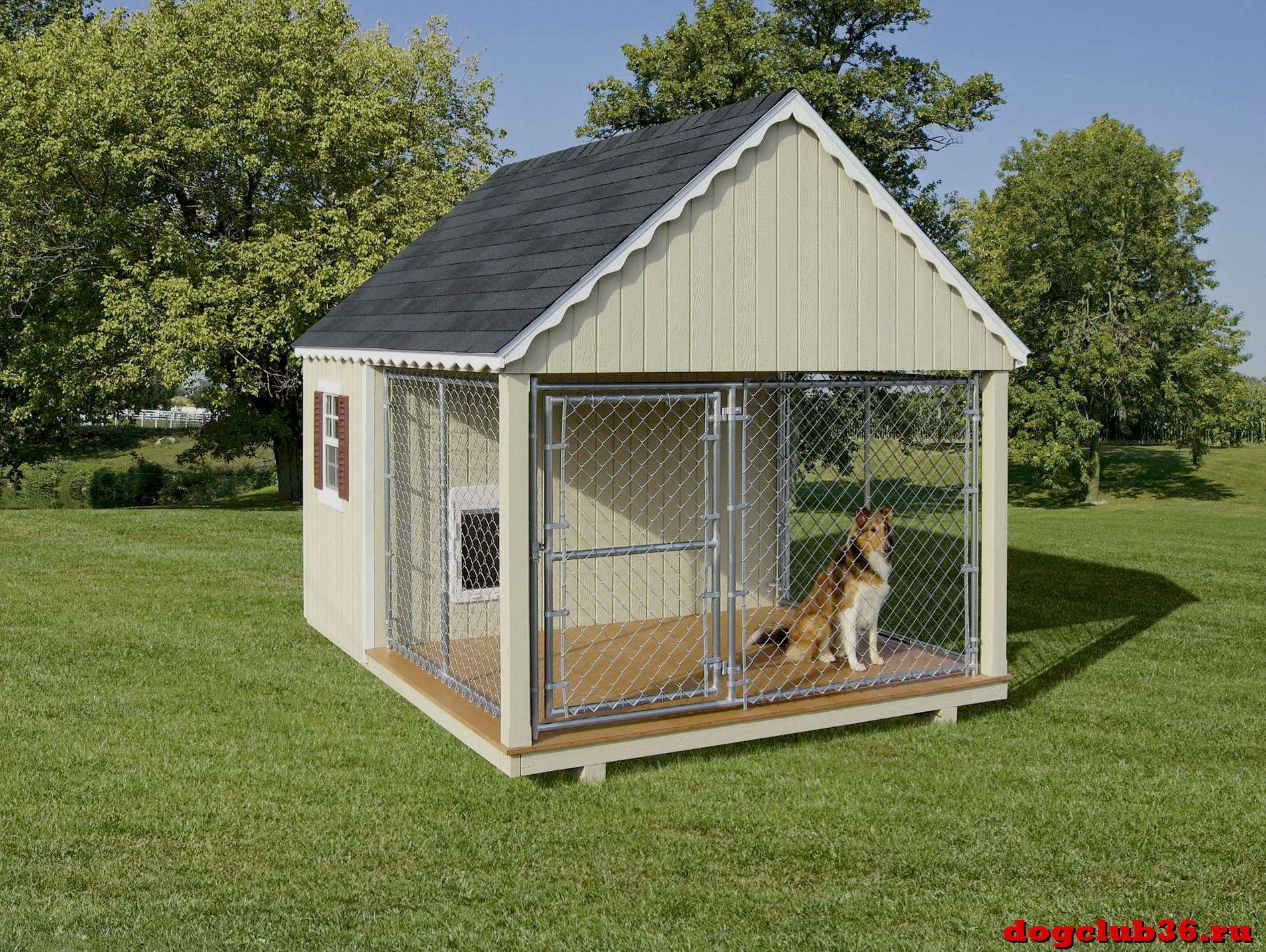Как приучить собаку к вольеру на улице